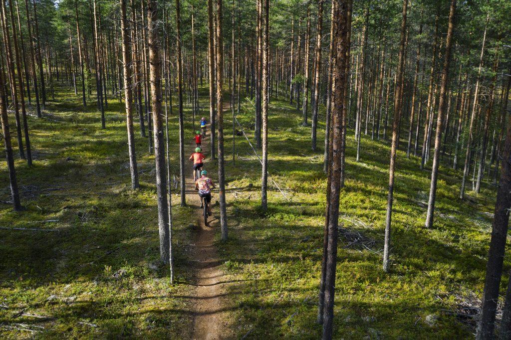Nelihenkinen perhe maastopyöräilee metsäpolulla kesällä, ylhäältä kuvattu.