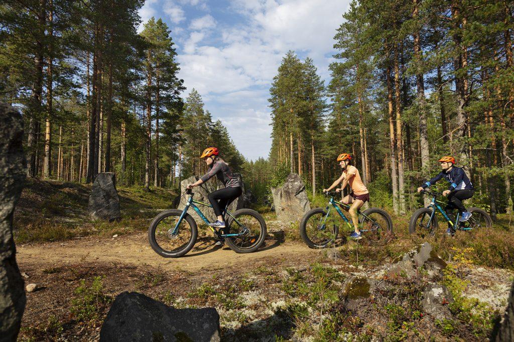 Kolme nuorta aikuista maatopyöräilee Salpalinjan vieressä kulkevaa polkua kesällä.