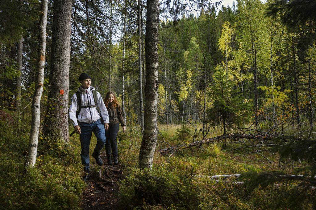 Nuori mies ja nainen kävelevät polkua pitkin Kolvanuuron rotkolaaksossa.
